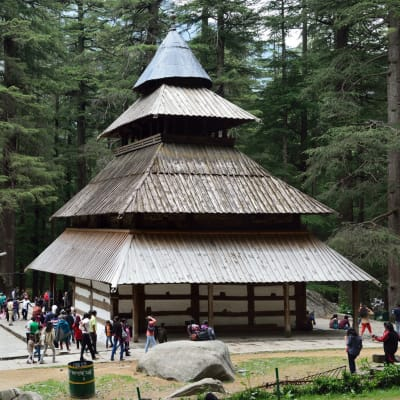 Solang Valley + Manali Local Sightseeing